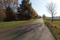 Droga przed Sadami