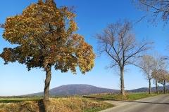 Widok z drogi Wiry - Tąpadła